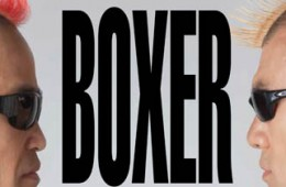 Gamarjobat presents Boxer 2014